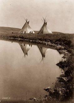 This picture ( by Edward Curtis) was taken in and shows Native American Tipis of the Piegan tribe by the water's edge. A small group can be seen sitting in front of the dwellings. Native American Beauty, Native American Photos, Native American History, American Indians, American Life, Native American Teepee, American Quotes, American Symbols, Native American Tribes