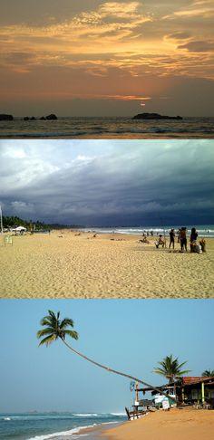 Beach, Hikkaduwa, Sri Lanka #SriLanka #Hikkaduwa #Beach #Palm