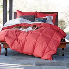 La Crosse® Down Comforter in spiced coral. This is mine for college!! Monogramed (: