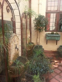 Northwards house in Johannesburg, South Africa Beautiful Sunset, Most Beautiful, African Image, South Afrika, Out Of Africa, Continents, Container Gardening, World, Places