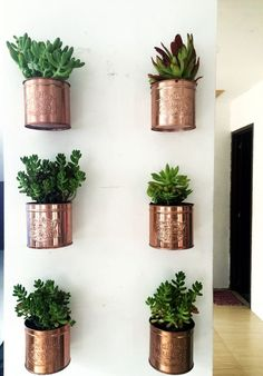 Diy ice cream tin can wall planters