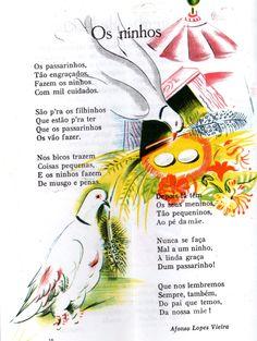 Os ninhos