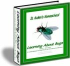 215 pages - includes worksheets, games, teacher resources - Learning About Bugs, Part N to Z - St Aiden's Homeschool Bug Parts, Teacher Resources, Summer Fun, Worksheets, Bugs, Insects, Homeschool, Printables
