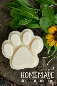These natural homemade dog shampoo bars feature neem oil, which is especially helpful at repelling fleas and treating a variety of skin complaints. Shampoo Bar Diy, Homemade Dog Shampoo, Solid Shampoo, Organic Shampoo, Natural Dog Shampoo, Homemade Conditioner, How To Make Shampoo, Diy Savon, Coconut Milk Shampoo