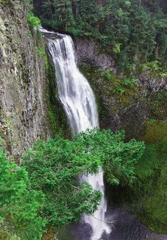 Salt Creek Falls OR
