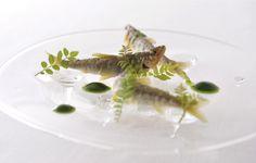 """南青山フレンチ「Narisawa」 French restaurant """"Narisawa"""". Expressed swimming fishes on the dish"""