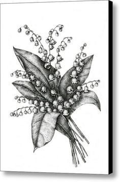 Lily of the valley art, original artwork, botanical sketches, black Valley Sketch on