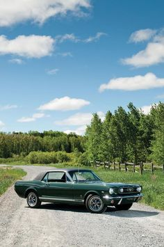 RebelMotorheadGarage 1966 Ford Mustang, Picture Collection, Firebird, Mustangs, Projects, Cars, Log Projects, Mustang, Wild Mustangs