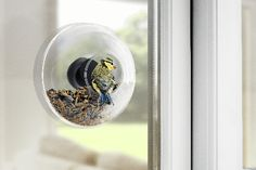 Eva Solo Window Bird Feeder- this product is designed to mount into a window in your house, allowing you to see what your garden has to offer up close!
