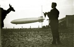 Two fawns and the zeppelin to Germany