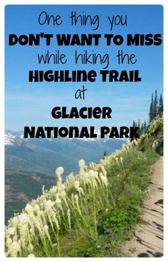See the one hike that you do NOT want to miss if you travel to Glacier National Park in Montana.  Plus camping, hiking, photography and other tips...