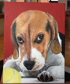 Si chiama Luna, è un cucciolo di Beagle. Da una sua foto è stato realizzato un ritratto ad olio su tela. Un'idea per un regalo, basta una foto!!