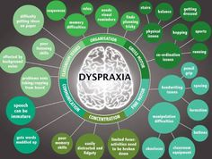 A person with dyspraxia has problems with movement, coordination, judgment, processing, memory and some other cognitive skills. Dyspraxia also affects the body's immune and nervous systems.   ...