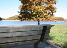 Fall bench at Greenbrier State Park
