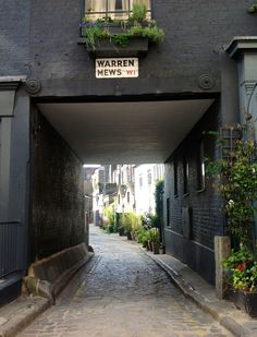Planting in pots entices you (or at least your eye) down this cobbled mews lane off Warren Street, London.