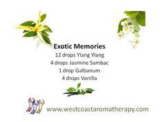 Exotic Memories Synergy