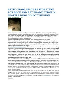 Attic crawlspace restoration for mice and rat eradication in seattle king county region