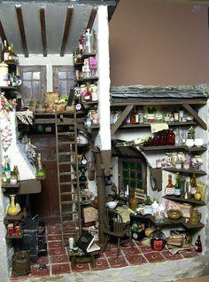 pillendreher_07 cluttered mini cottage shop? interior