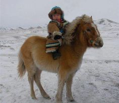 Mongolian horse ridden by young Mongolian. Photo by Temuujin Bilgee