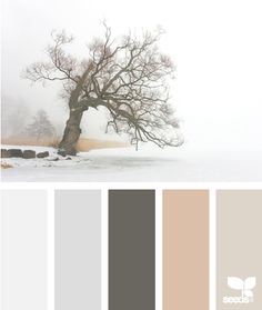 neutrals - maybe a blanket in these colours?