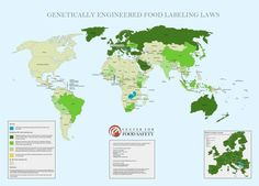 The U.S. is the only developed country in the world that doesn't label GMO foods.