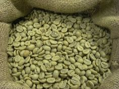Unroasted Green Premium Grade Coffee  Guatemala Antigua SHB >>> Find out more about the great product at the image link.