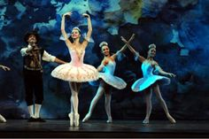 Raquel Superlinda: Como e Porque o Ballet Bolshoi Veio Parar em Joinv...