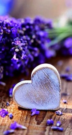 A Purple Heart for the Love of Lavanda