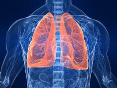 Descubren una función desconocida de los pulmones