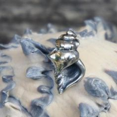 """Conch shell"" by Red Bali Frog."