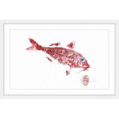 Red Mullet Framed Painting Print, Red