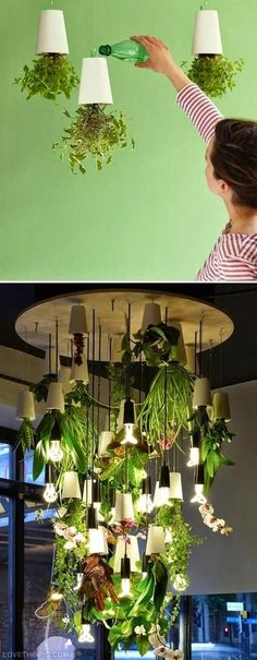 30 Amazing DIY Indoor Herbs Garden Ideas THis makes my windowsill herb garden look pathetic! This herb chandelier thing is absolutely fantastic.