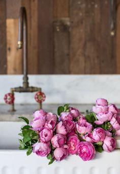 IML, syflove:   roses