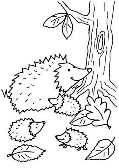 Home Decorating Style 2020 for Coloriage Pictures, you can see Coloriage Pictures and more pictures for Home Interior Designing 2020 at Coloriage Kids. Pinecone Crafts Kids, Kids Fall Crafts, Pine Cone Crafts, Coloring Sheets, Coloring Books, Coloring Pages, Hedgehog Craft, Nocturnal Animals, Autumn Activities