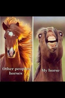 smiling, some horses are happier than others.