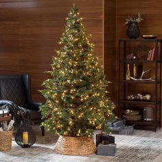Natural Evergreen Pre-Lit Christmas Tree