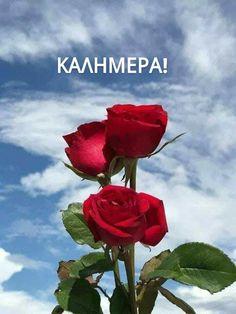 Good Morning Good Night, Good Morning Images, Greek Language, Beautiful Pink Roses, Beautiful Morning, Painting, Mornings, Smoothies, Flowers