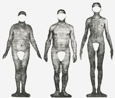 Body Structure-In the 1940's Dr. William Sheldon, an American psychologist coined his theory on somatotypes (or basic body types). His theory identified three basic body types: endoderm, mesoderm and ectoderm (based on the three  tissue layers). Today, his work is seen as pseudoscience within scientific communities.