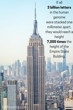 If all 3 billion letters in the human genome were stacked one millimeter apart, they would reach a height 7,000 times the height of the Empire State Building!  #DNA