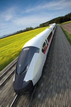 A high speed train concept designed to exploit a character appropriate for central European aesthetic values. The design language reinforces the sensation of strength and durability combined with a fluid, organic form. Rail Transport, Public Transport, Train Tracks, Train Rides, Ouvrages D'art, Escala Ho, Future Transportation, High Speed Rail, Train Art