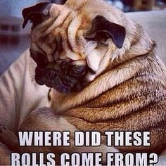 Where did these rolls come from...how i feel when i don't workout :(...they aren't going away if you don't do the work!