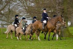 One of my favorite fox hunting pics :) a leg in each corner!