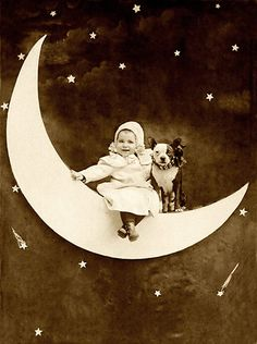 Baby wishes upon a star with her Boston terrier-like mix.