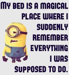 Top 28 Funniest Minions Memes 4 Funny Minion Pictures, Funny Minion Memes, Minions Quotes, Hilarious Memes, Funniest Jokes, Funny Pics, Minion Humor, Minions Love, Minion Top