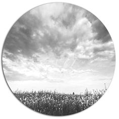 Bring contemporary abstraction to your home with this circle metal wall art. This modern Rapeseed Garden in Black and White metal artwork makes it the focal point of any room or office.