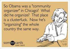 Community organizer = professional shit stirrer.