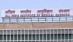 Live rat found inside sealed packet of bread at Delhi's AIIMS