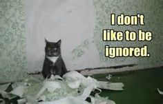 oh the drama of being ignored meme - - Yahoo Image Search Results