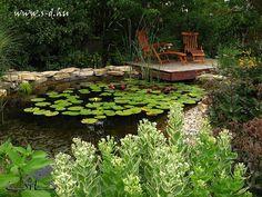 Dream Garden, Stepping Stones, My Dream, Garden Ponds, Waterfalls, Outdoor Decor, Home Decor, Stair Risers, Decoration Home