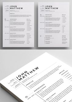 50 Best Resume Templates Of 2020 - 25